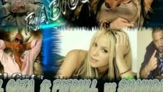 RABIOSA   Shakira & El cata ft pitbull remix( dj edwin)