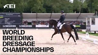 RE-LIVE | Dressage (5-yr-old horses) | Longines FEI/WBFSH World Breeding Dressage Championships