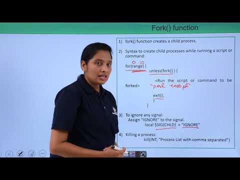 perl---process-management