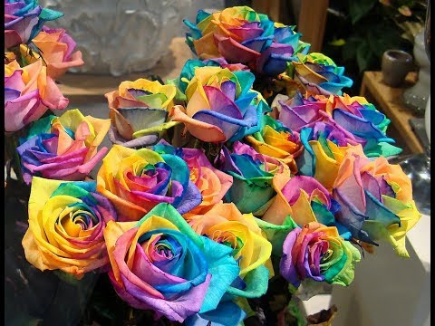 Как покрасить живые цветы