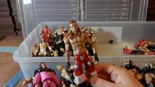WWE Mattel Elite Collection 2015 (Bin 2 - Legends, Flashbacks, Customs + more)