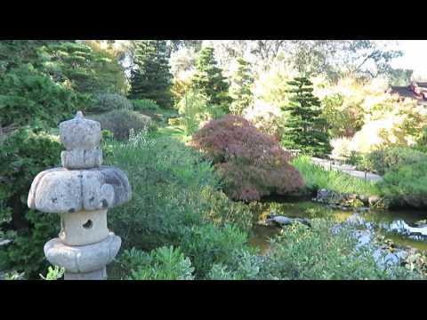 Hakone Gardens - Saratoga, California