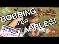 Halloween Party Games: Bobbing for Apples! (cheap + fun!)