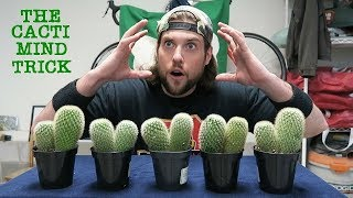 Can A Human Trick Their Mind Into Eating 10 Cacti? (Warning: Dumb) | L.A. BEAST
