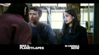 Rise of the Planet of the Apes - Trailer - In cinemas now!