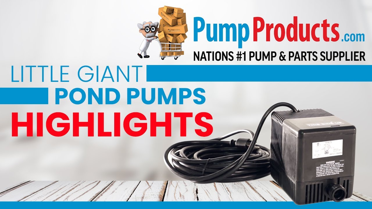 Little Giant Pond Pumps Product Highlight