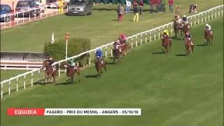 Vidéo de la course PMU PRIX DU MESNIL