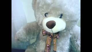Говорящий медведь - мягкая игрушка на заказ, купить у TeleSmile(, 2016-04-21T09:14:58.000Z)