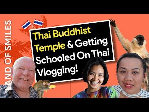 Thailand Buddhist Temple (Inc Monkeys)