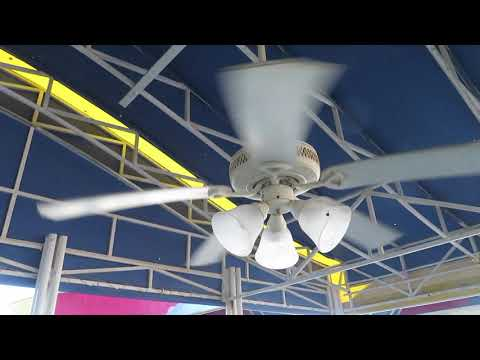 From the archives: Ceiling fan videos from 2011-2017