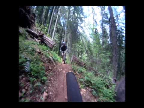 McKenzie River Trail: Mountain Biking Trail Guide