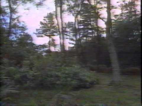 Christopher Robin Milne in CNN Ashdown Forest segment