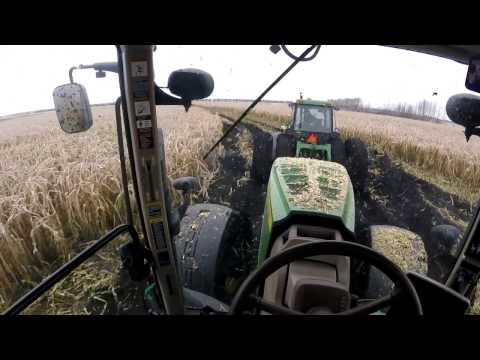 Holtrop Enterprises Corn Silage in Extreme conditions