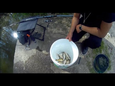 Fishing360 - Paranza in Padule