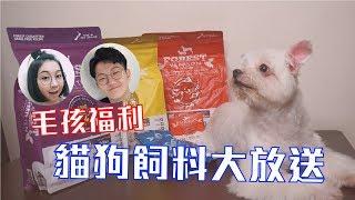 VeryQ|【寵物】毛孩福利!貓狗飼料大放送!
