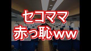 新幹線の指定席に子どもと座っていたらキチママが来て「つめてうちの子...