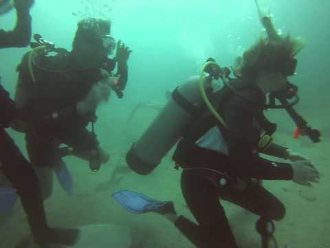Father's Day Scuba Dive with Go Pro