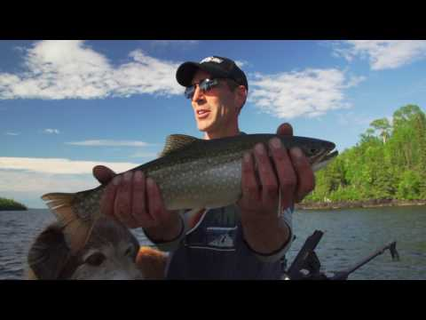 Brook Trout on a Budget | Onaman River Resort