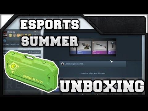 Esports 2020 Summer Case