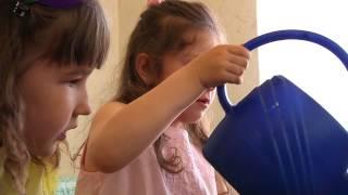 Детский сад. Урок естествознания.