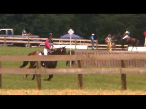 "Alana Grace Vogel ""Big Bartz"" Seneca Valley Pony Club Horse Trials XC/N 6/14/2015"