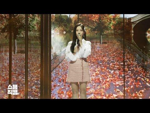 [쇼챔직캠] 송하예 - 새 사랑 (SongHaYea - Another Love) L EP.338