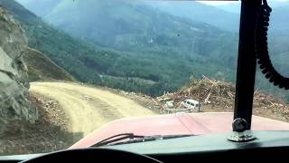 Peterbilt logger comes off a cliff.
