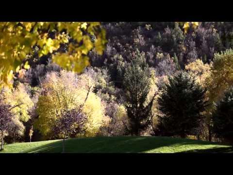 Autumn In Utah Valley