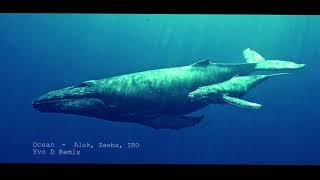 Baixar Alok, Zeeba, Iro - Ocean (Yvo D  Remix)