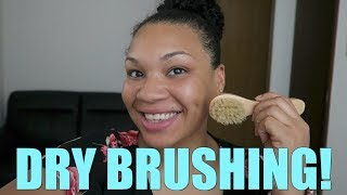 DRY BRUSHING INITIAL REVIEW (WHITAKERS WAY)
