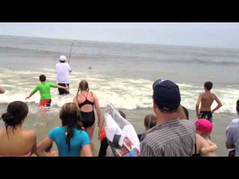Man catches sting ray in ocean city nj youtube for Nj shore fishing report