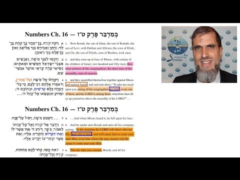 Numbers 16: Korach, Dathan, and Abiram — The Rebellion's Motivation and Message (English only)