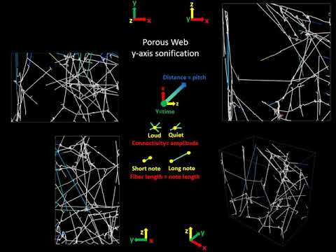 Spider web sonification: Less busy music, sonification of the porous web along y-axis