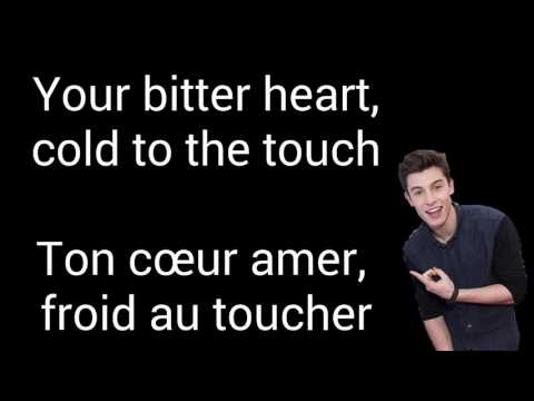 Shawn Mendes - Stitches ( Traduction française )