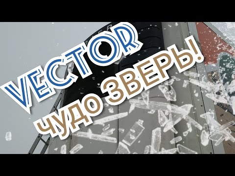Обзор Vector 1850‼️Самые частые болячки‼️