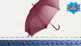 Видеообзор зонта-трость бордового женского полуавтомат FARE
