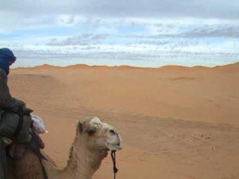 Shor trip from Marrakech