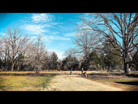 Texas Homestead Build UPDATE