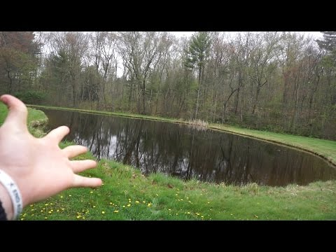 Worlds SMALLEST Pond?! ~ Is There Fish In It??? Lets Find Out