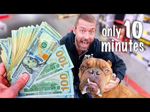 Donating $10,000 to Animal Shelter but only 10 Minutes to Spend Challenge