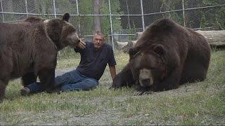 誇張!紐約男子與1500磅棕熊勾肩搭背【大千世界】熊抱 抱熊 野生動物 寵物 動物奇觀