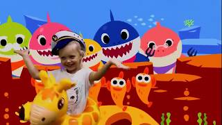 Baby Shark Animal Songs Songs for Children ¦ Songs Baby Shark Nursery Rhymes Songs | 2019