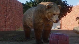 Niedźwiadki dostały sąsiadów - Planet Zoo / 01.10.2019 (#2)