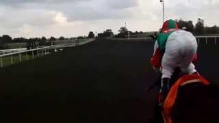 Ride a Race with John Velazquez