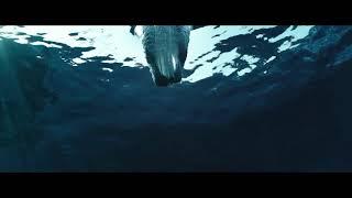 "Клип фильма ""Спасатели Малибу"" No Lie Sean Paul feat. Dua Lipa"