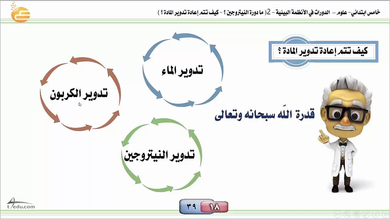 الدورات في الأنظمة البيئية2 ما دورة النيتروجين كيف يتم إعادة تدوير المادة خامس Youtube