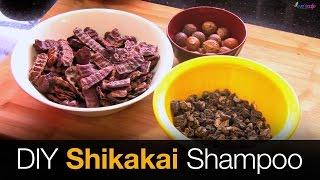 Shikakai Shampoo   Hair Growth Shampoo - DIY