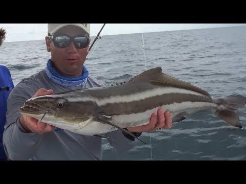 Saltwater fishing ZEBCO CHALLENGE florida Offshore