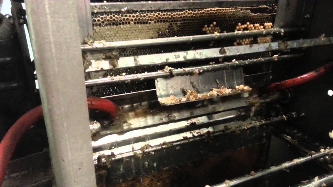Comment est extrait le miel après récolte dans les ruches ?