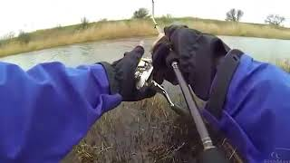 Рибалка на щуку, щука на спінінг, ловля навесні на річці